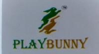 PlayBunny
